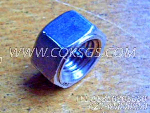 219138六角螺母,用于康明斯NTA855-GH主机增压器安装组,【动力电】配件-0