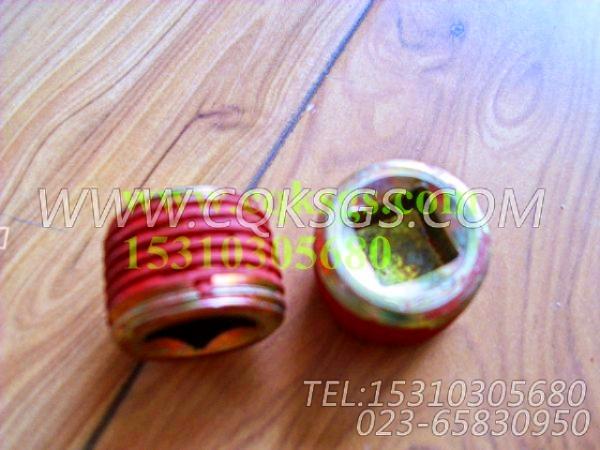 3008468管塞,用于康明斯KTA19-G3主机节温器.壳.支架总成组,【电力】配件-2