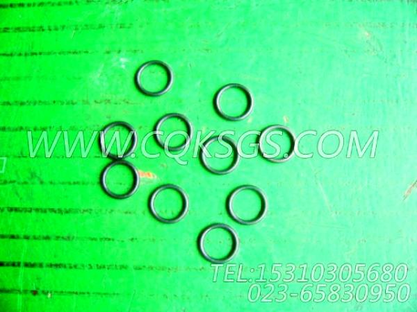 3001340O型密封圈,用于康明斯KTA38-G5柴油发动机性能件组,【柴油发电】配件-1