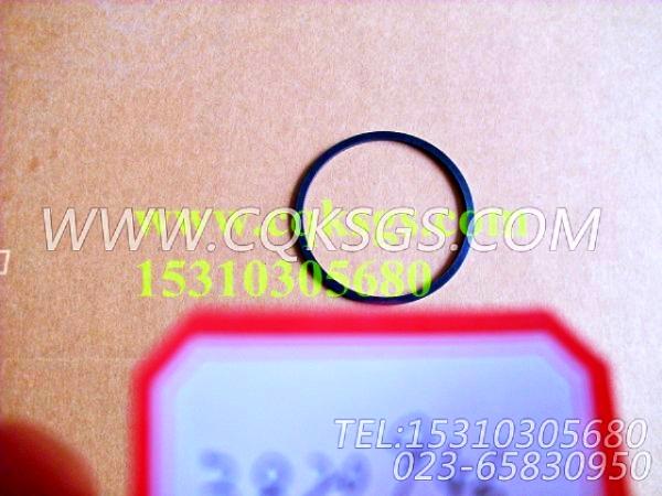3820946矩形密封圈,用于康明斯M11-C300主机气缸体组,【履带式装载机】配件-2
