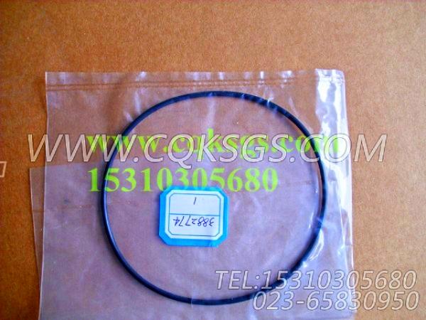 3882774O型密封圈,用于康明斯M11-C175柴油发动机水泵组,【拌和机】配件