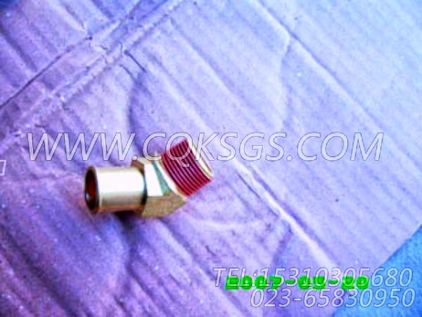 3003536增压器回油弯管,用于康明斯KTA19-C450柴油发动机增压器安装组,【钻机】配件-2