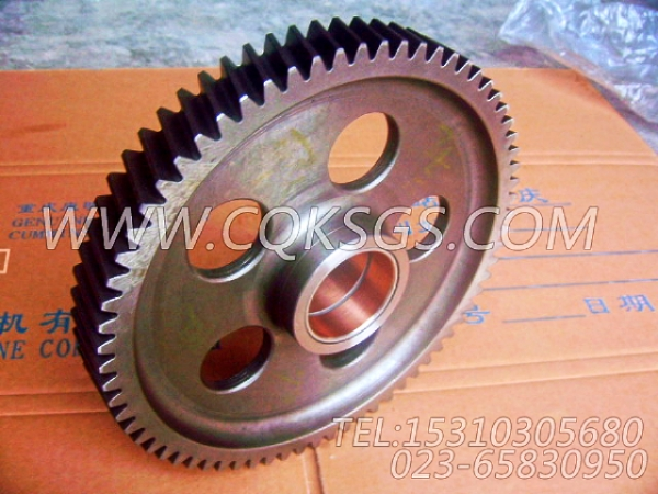3004681凸轮轴中间齿轮总成,用于康明斯KTA38-G2-600KW柴油机基础件组,【发电机组】配件