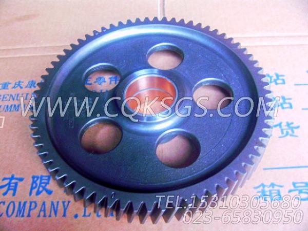 3004681凸轮轴中间齿轮总成,用于康明斯KTA38-G2-600KW柴油机基础件组,【发电机组】配件-0