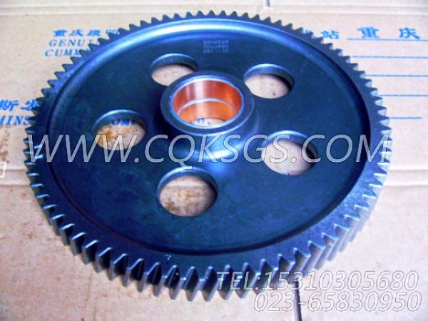 3004682水泵中间齿轮总成,用于康明斯KTA38-C1200柴油机基础件组,【江汉四机压裂车】配件