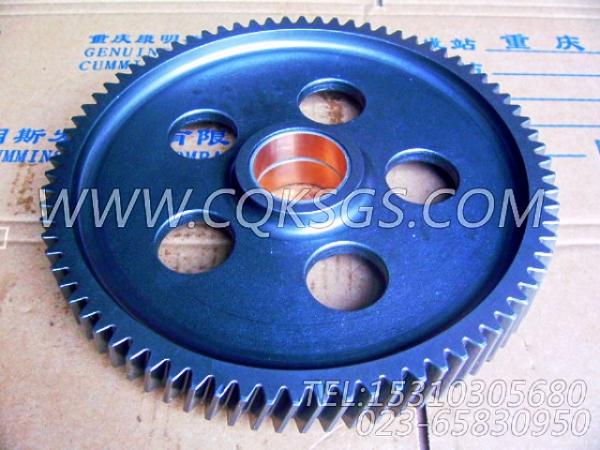 3004682水泵中间齿轮总成,用于康明斯KTA38-C1200柴油机基础件组,【江汉四机压裂车】配件-0