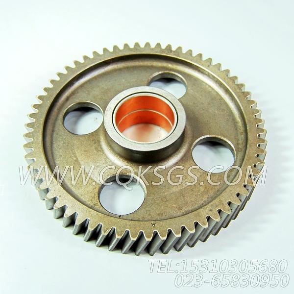 3004684凸轮轴中间齿轮,用于康明斯KTA19-G2柴油机基础件组,【发电用】配件