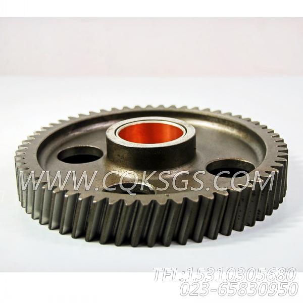 3004684凸轮轴中间齿轮,用于康明斯KTA19-G2柴油机基础件组,【发电用】配件-0