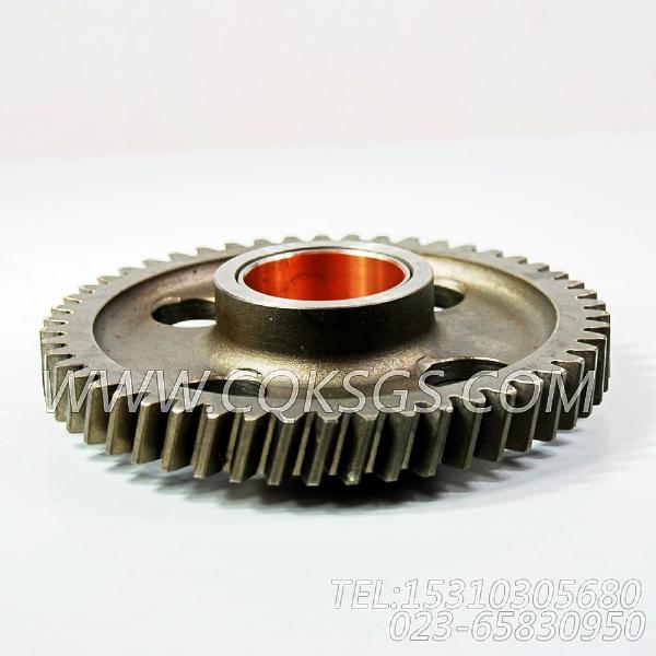 3004685水泵中间齿轮,用于康明斯KTA19-P600柴油机基础件组,【泥浆泵】配件-0