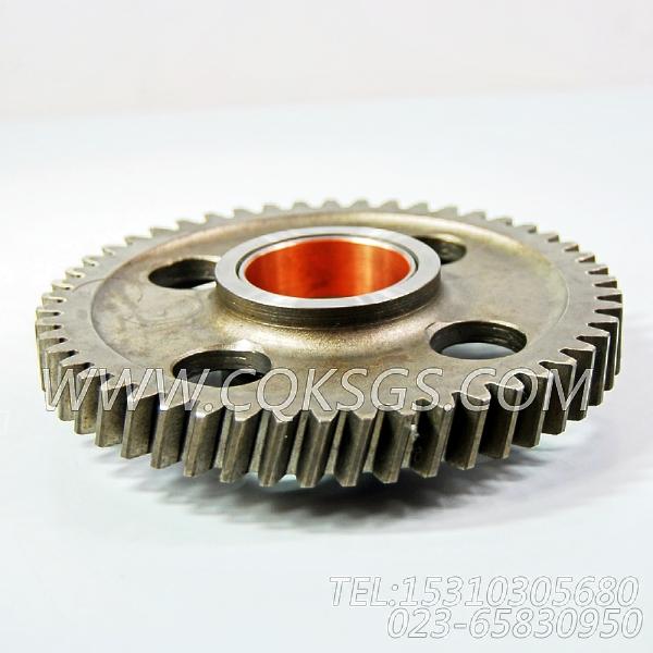3004685水泵中间齿轮,用于康明斯KTA19-P600柴油机基础件组,【泥浆泵】配件-2