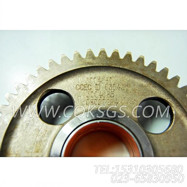 3004685水泵中间齿轮,用于康明斯KTA19-P600柴油机基础件组,【泥浆泵】配件-1