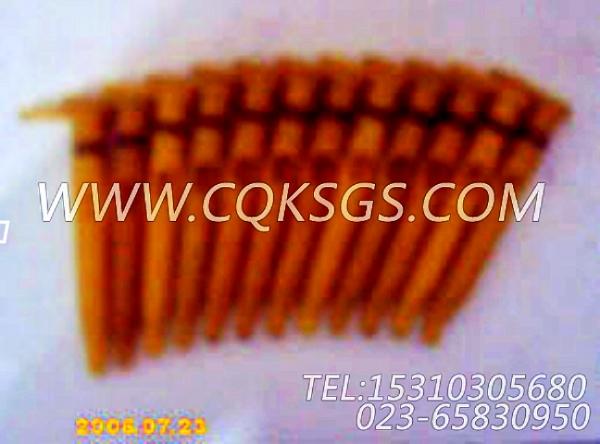 3007517活塞冷却喷嘴,用于康明斯KTA19-P430柴油发动机基础件组,【泥浆泵】配件-1