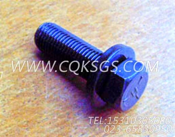 3008069带垫螺栓,用于康明斯NT855-C310柴油发动机机油盘组,【威马冷再生机】配件-1