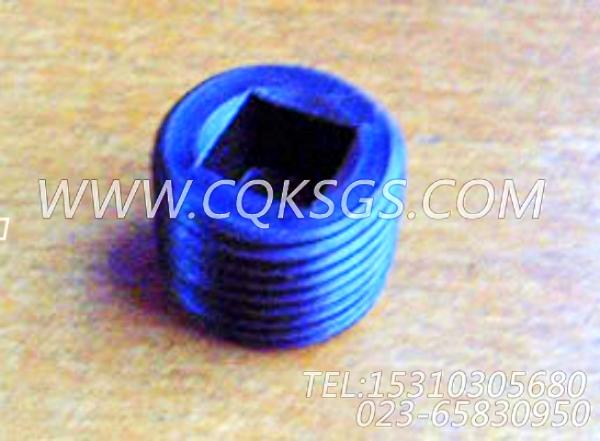 3008468管塞,用于康明斯KTA19-G4(M)主机节温器.壳.支架总成组,【船用】配件-0