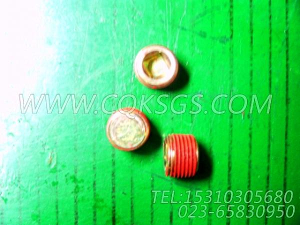 3008468管塞,用于康明斯NTA855-P220柴油机基础件(船检)组,【泥浆泵】配件-0