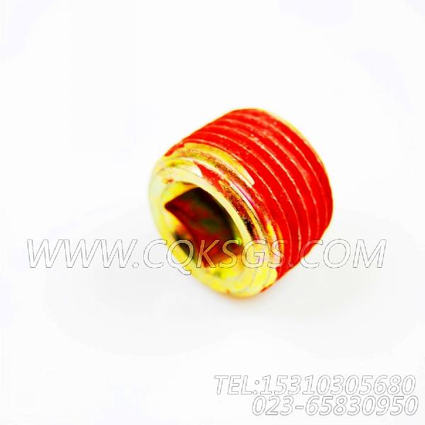 3008468管塞,用于康明斯KTA19-G3主机节温器.壳.支架总成组,【电力】配件-0