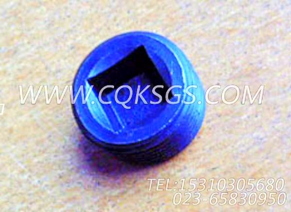 3008469管塞,用于康明斯KTA19-M470动力节温器.壳.支架总成组,【抽沙船用】配件-0