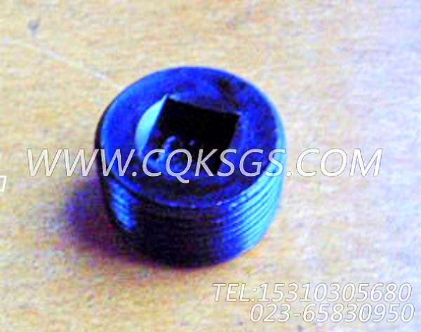 3008470管塞,用于康明斯KT19-C450动力基础件组,【稳定土拌和机】配件-2