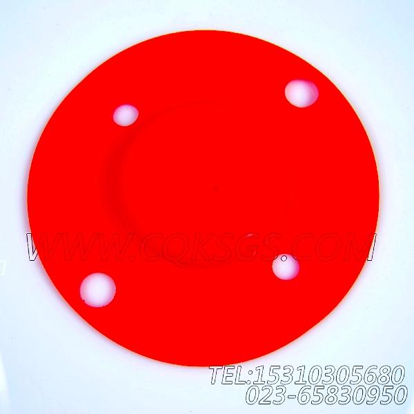 3008883防护盖,用于康明斯NT855-C280动力风扇布置组,【徐州重机起重机】配件-2