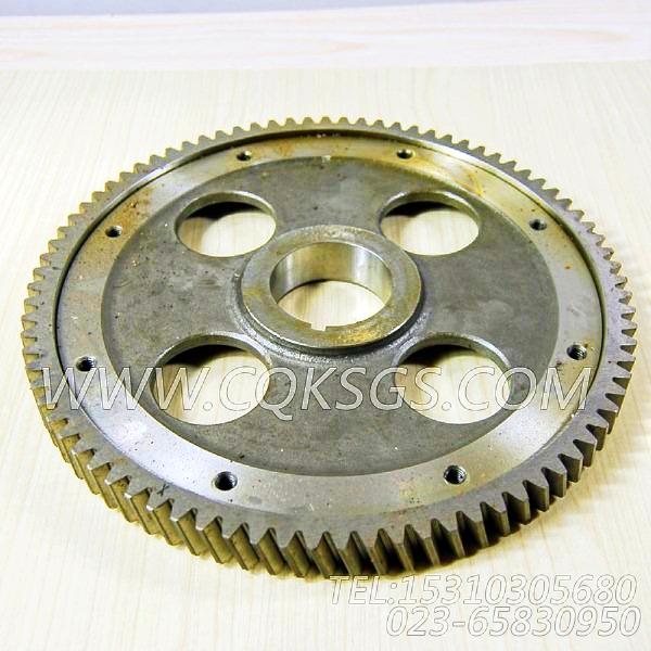 3008970凸轮轴齿轮,用于康明斯KT19-M425柴油发动机性能件组,【船用主机】配件-0