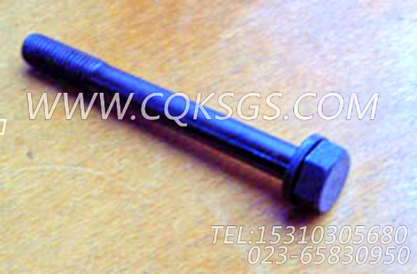3010589带垫螺栓,用于康明斯NT855-P250动力基础件(船检)组,【应急水泵机组】配件-0