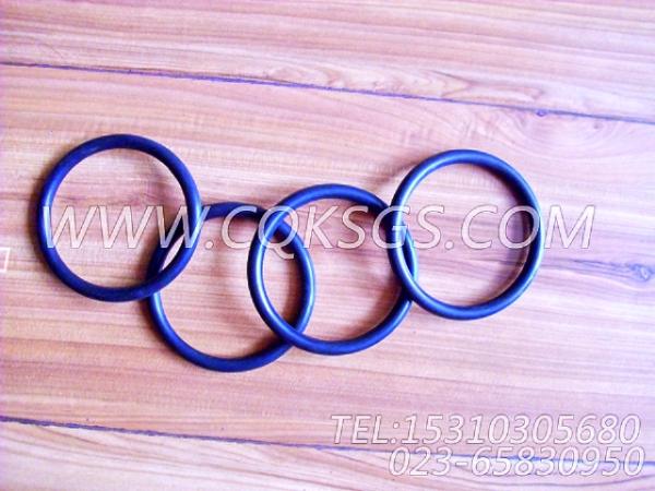 3028291O型密封圈,用于康明斯KTA19-G4柴油机进气管组,【发电用】配件