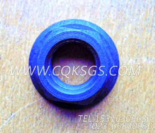 3012526六角螺母,用于康明斯NT855-M300发动机附件驱动皮带轮组,【船舶】配件-1