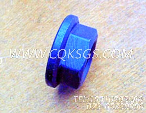 3012526六角螺母,用于康明斯NTC-400动力附件驱动皮带轮组,【工程机械】配件-1
