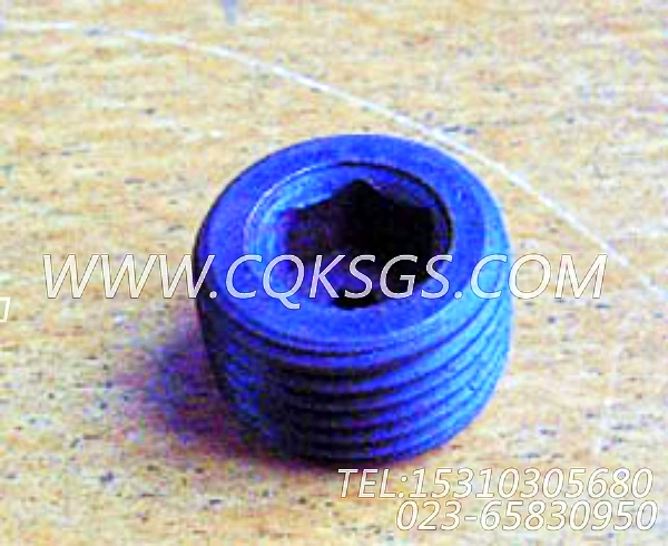 3013786管塞,用于康明斯KTA38-C1050发动机前齿轮室组,【军品车】配件-0
