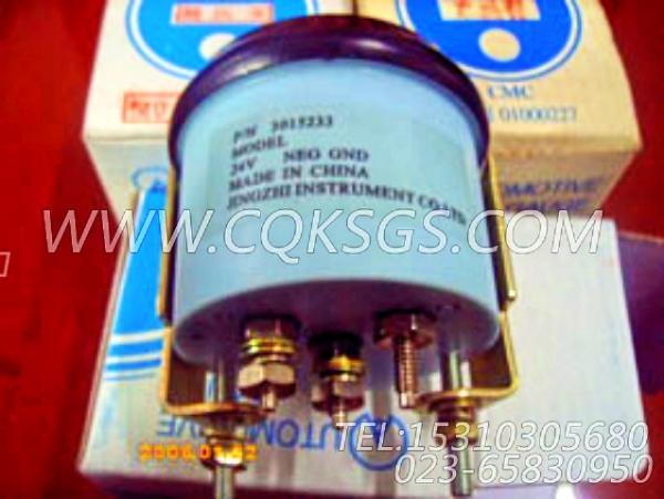 3015233温度表,用于康明斯NTA855-G2柴油机仪表板组,【柴油发电】配件-2