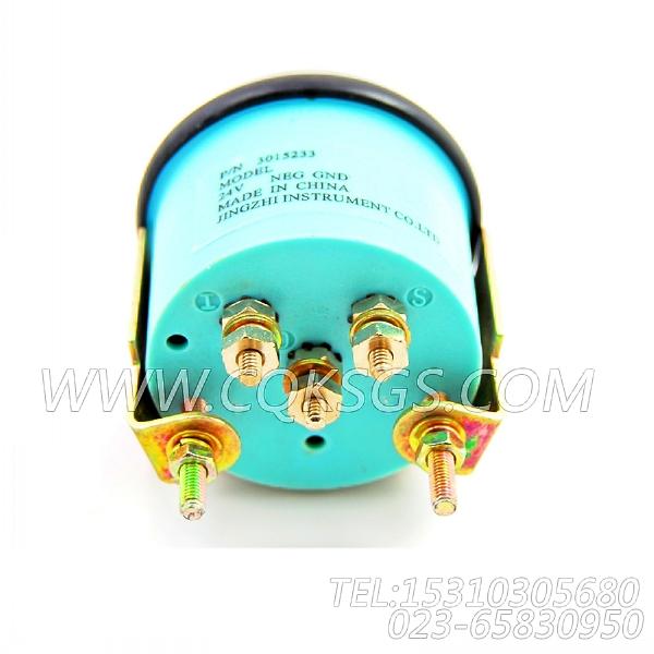 3015233温度表,用于康明斯NT855-P300柴油机仪表板组,【应急水泵机组】配件-0