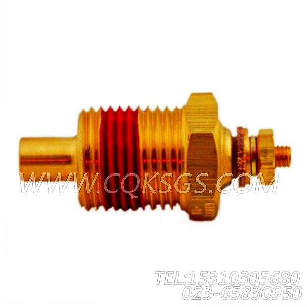 3015238温度传感器,用于康明斯NT855-C250动力油温传感器组,【供液泵车】配件-1