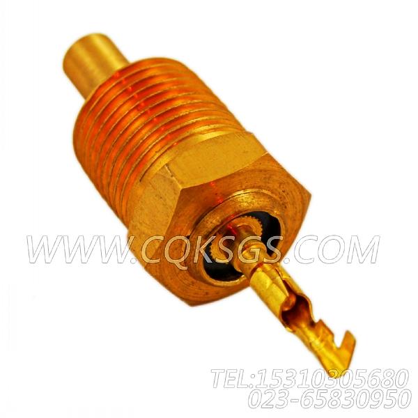 3015238温度传感器,用于康明斯MTA11-G2柴油机发动机主导线束组,【船舶用】配件-2