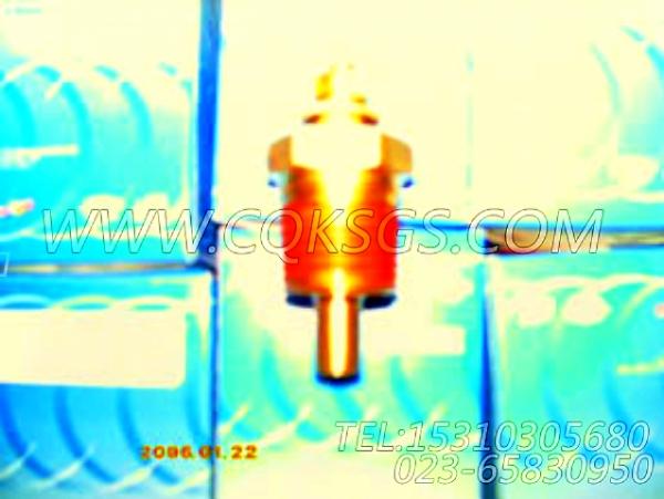 3015238温度传感器,用于康明斯KTA38-G2-660KW发动机发动机导线组,【动力电】配件-1