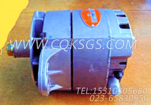 3016627充电机,用于康明斯KTA19-C525动力充电发电机组,【四川长起起重机】配件-1