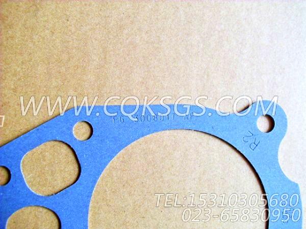 3008017机油冷却器衬垫,用于康明斯NTA855-G2-CE170主机机油冷却器组,【履带式装载机】配件