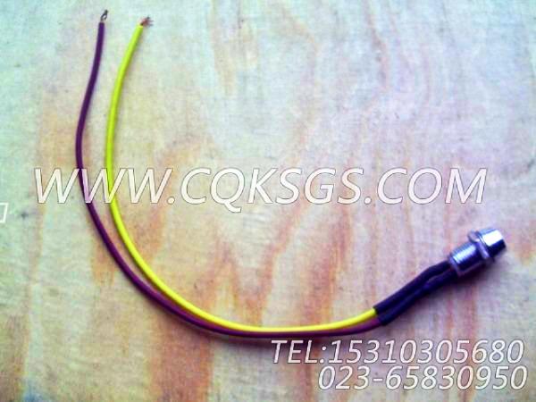 3022279指示灯,用于康明斯NT855-M270柴油机仪表板总成组,【船用主机】配件-2
