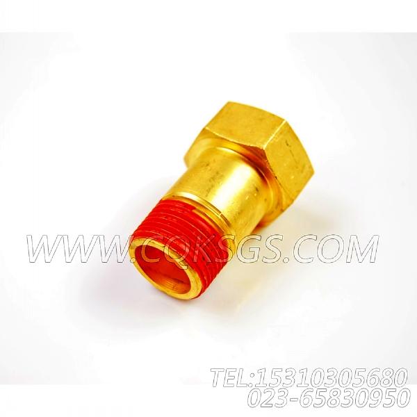 3022865阴性接头,用于康明斯NTC-290柴油发动机增压器安装组,【路面机械】配件