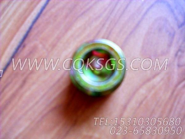 3013786管塞,用于康明斯KTA38-C1200柴油发动机前齿轮室组,【供液泵车】配件