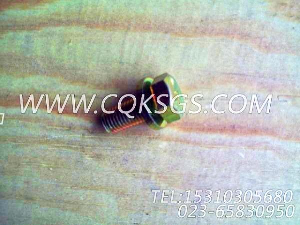 3033822带垫圈螺栓,用于康明斯KTA19-G3(M)动力基础件组,【船用主机】配件-1