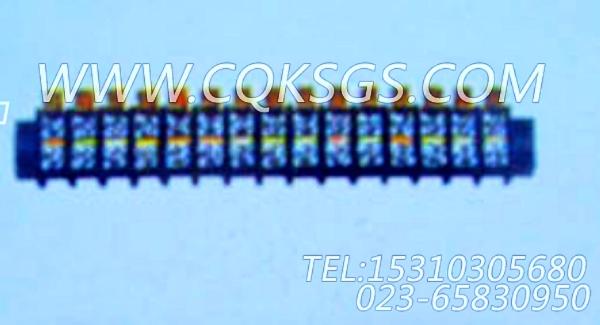 3036306接线端子,用于康明斯KTA19-M470主机仪表板总成组,【抽沙船用】配件