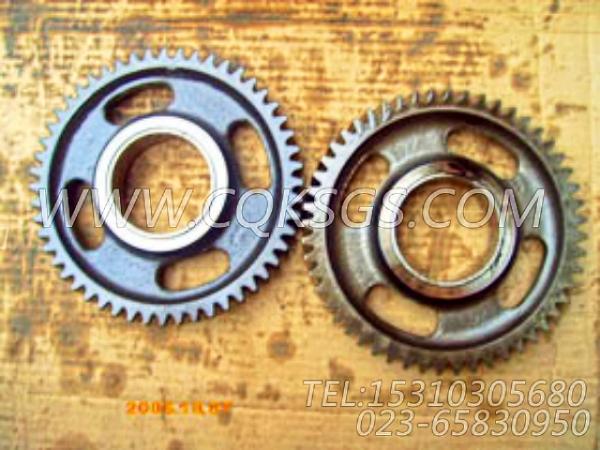 3084533惰齿轮,用于康明斯M11R-290动力气缸体组,【船舶用】配件-0