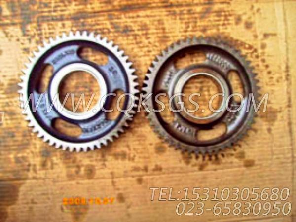 3084533惰齿轮,用于康明斯M11R-290动力气缸体组,【船舶用】配件-1