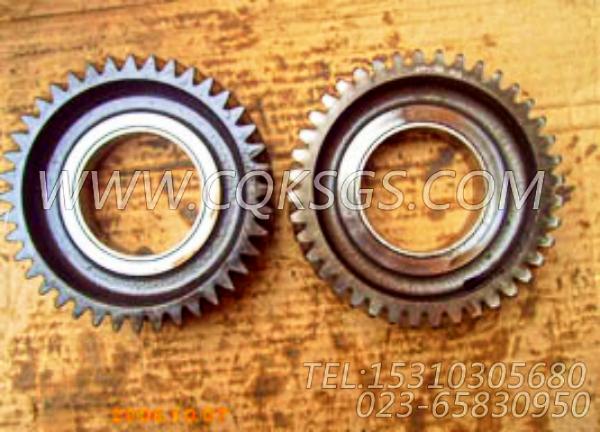 3038996惰齿轮,用于康明斯ISM320V动力气缸体组,【船用】配件-0