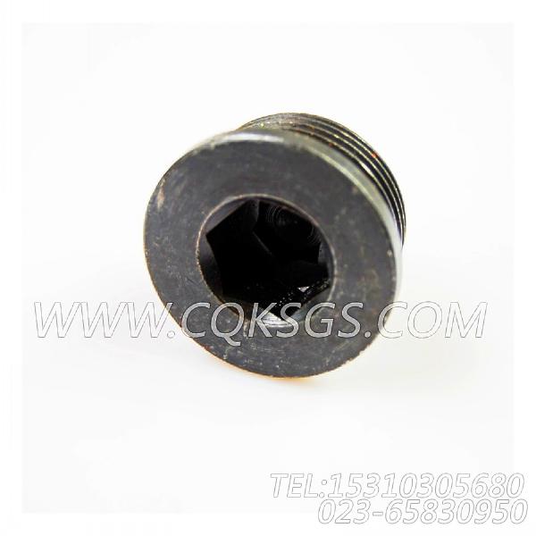 3040911螺塞,用于康明斯KTA38-M1柴油发动机燃油滤清器组,【抽沙船用】配件-1