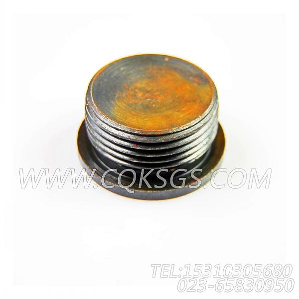3040911螺塞,用于康明斯KTA19-P540柴油机机油滤清器组,【消防泵】配件-2