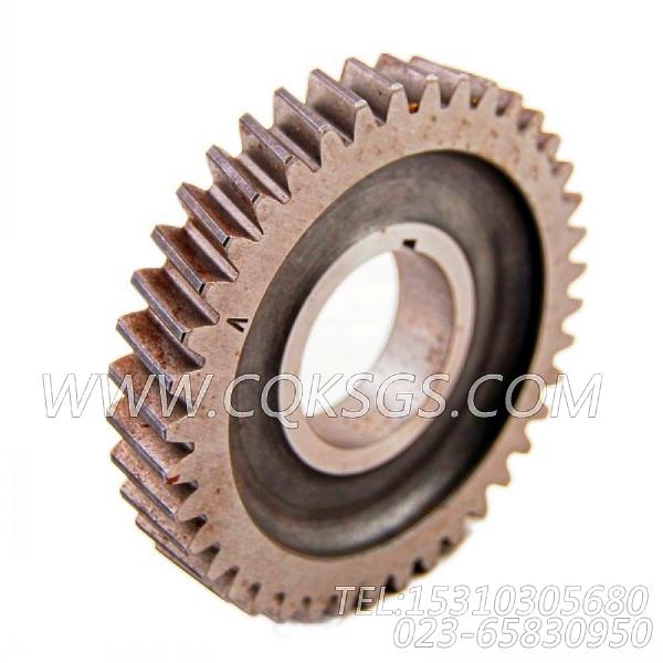 【配件齿轮传动】康明斯CUMMINS柴油机的3041042 配件齿轮传动-2