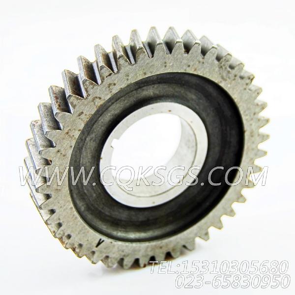 【配件齿轮传动】康明斯CUMMINS柴油机的3041042 配件齿轮传动-0