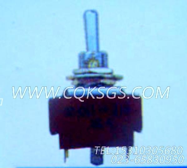 104215跳动式开关,用于康明斯MTA11-G2动力仪表箱组,【轮船用】配件-2