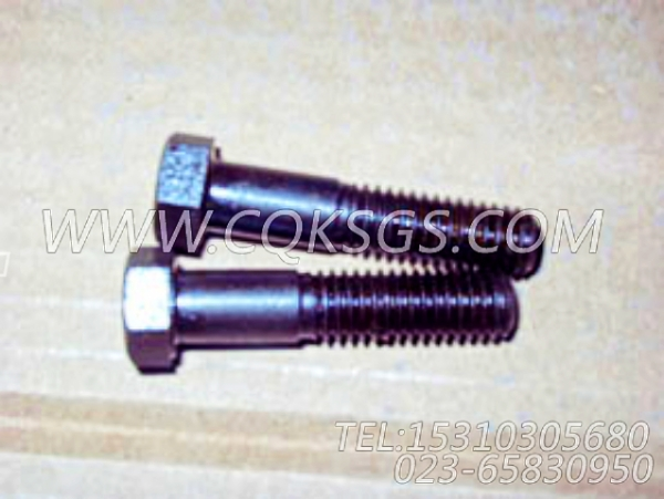 106069六角螺栓,用于康明斯KTA38-G5-880KW柴油机机油旁通滤清器组,【柴油发电】配件